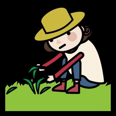 草むしりでの膝の痛み